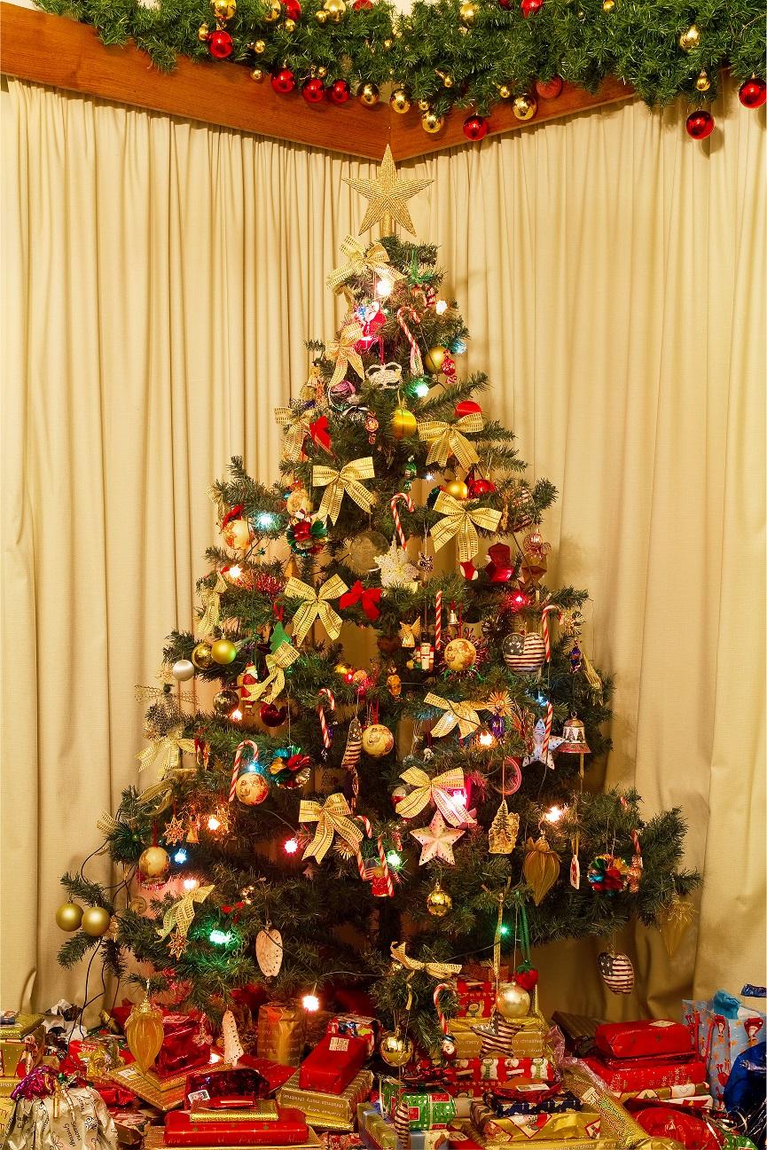 Kerstboom Ga Je Dit Jaar Voor Nep Design For Delight