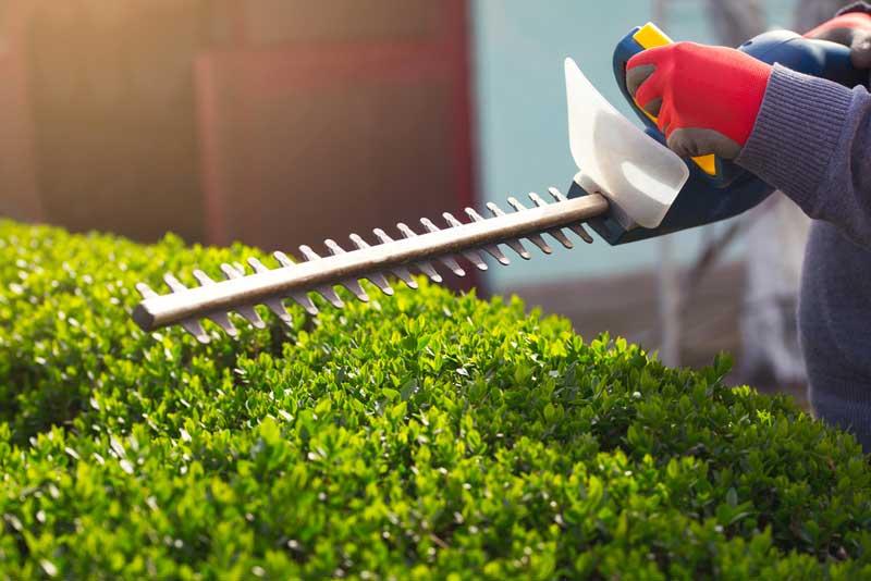 Tuin Laten Aanleggen : Voordelen van een tuin laten aanleggen door een hovenier en